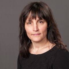 Image of Prof. Amanda Lewis