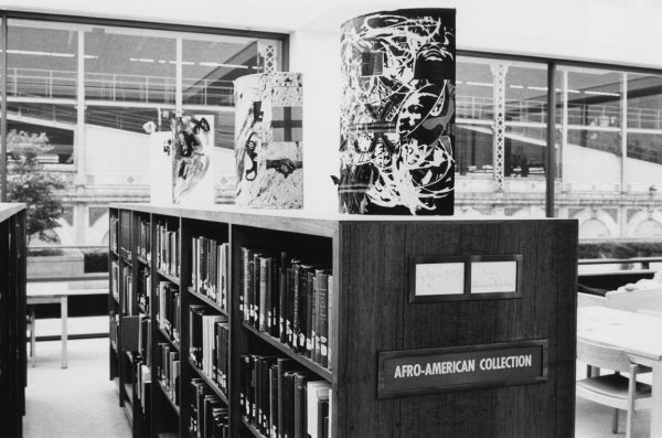 a library aisle in the Afro American collection